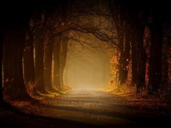 Road Sebastian_Luczywo_01